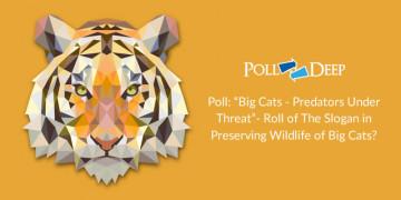 Poll Big Cats - Predators Under Threat- Roll of The Slogan in Preserving Wildlife of Big Cats