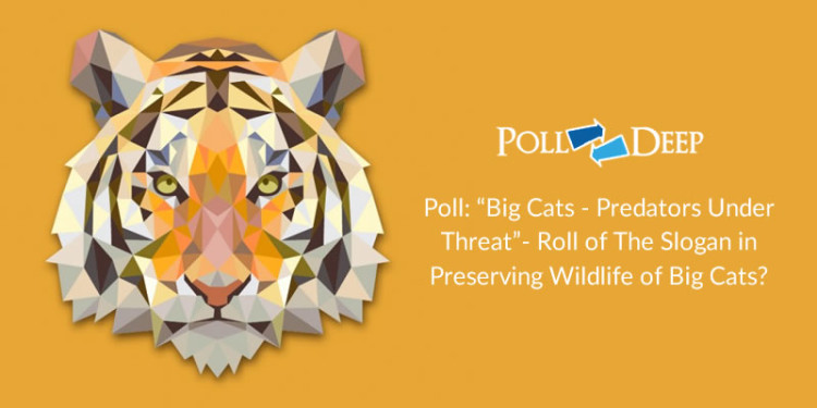 Poll Big Cats - Predators Under Threat- Roll of The Slogan in Preserving Wildlife of Big Cats