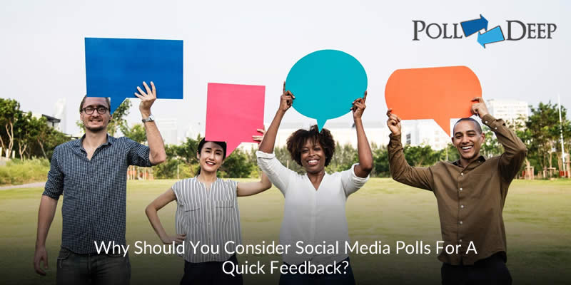 Why Should You Consider Social Media Polls for a Quick Feedback