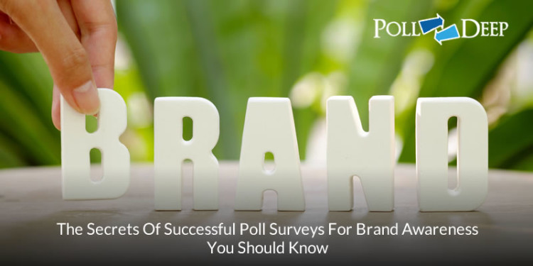 The Secrets of Successful Poll Surveys For Brand Awareness You Should Know