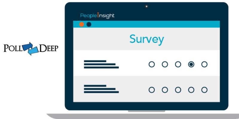 Online Polls Gain Useful Insights